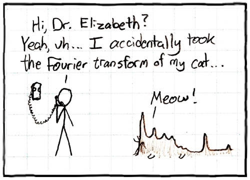 fouriercat